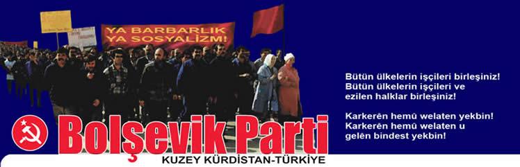 Bildergebnis für bolsevik parti