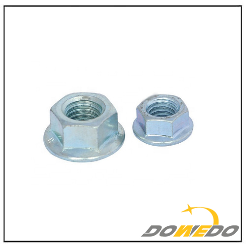 Cold Forged Flange Nut