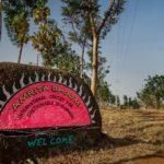 India. Escuela agroecológica Amrita Boomi: La necesidad de hacer tierra