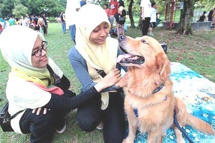 L'Islam e i cani