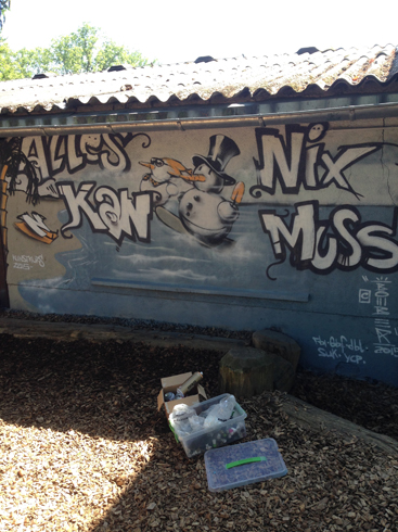 Montessori Zentrum Hofheim Graffiti Workshop 2015