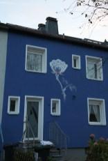 Rose, Schwanheim 2014