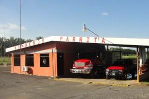 Parrita1