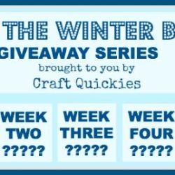 Beat the Winter Blues! Giveaway Series Week 1: Pick Your Plum