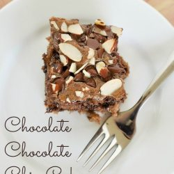 Chocolate Week: Chocolate Chocolate Chip Cake