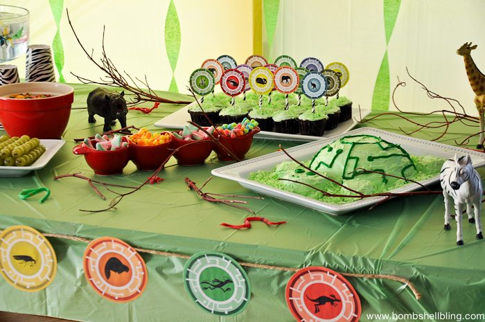 Wild Kratts Birthday Party-14