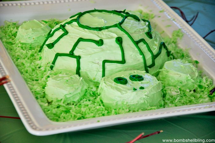 Phenomenal How To Make A Wild Kratts Tortuga Cake Personalised Birthday Cards Akebfashionlily Jamesorg