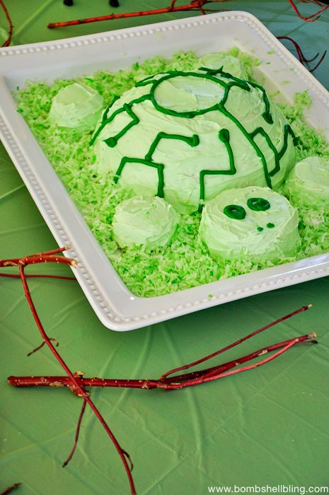A tortuga cake for a Wild Kratts birthday party!