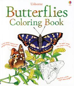 0001293_butterflies_coloring_book_300