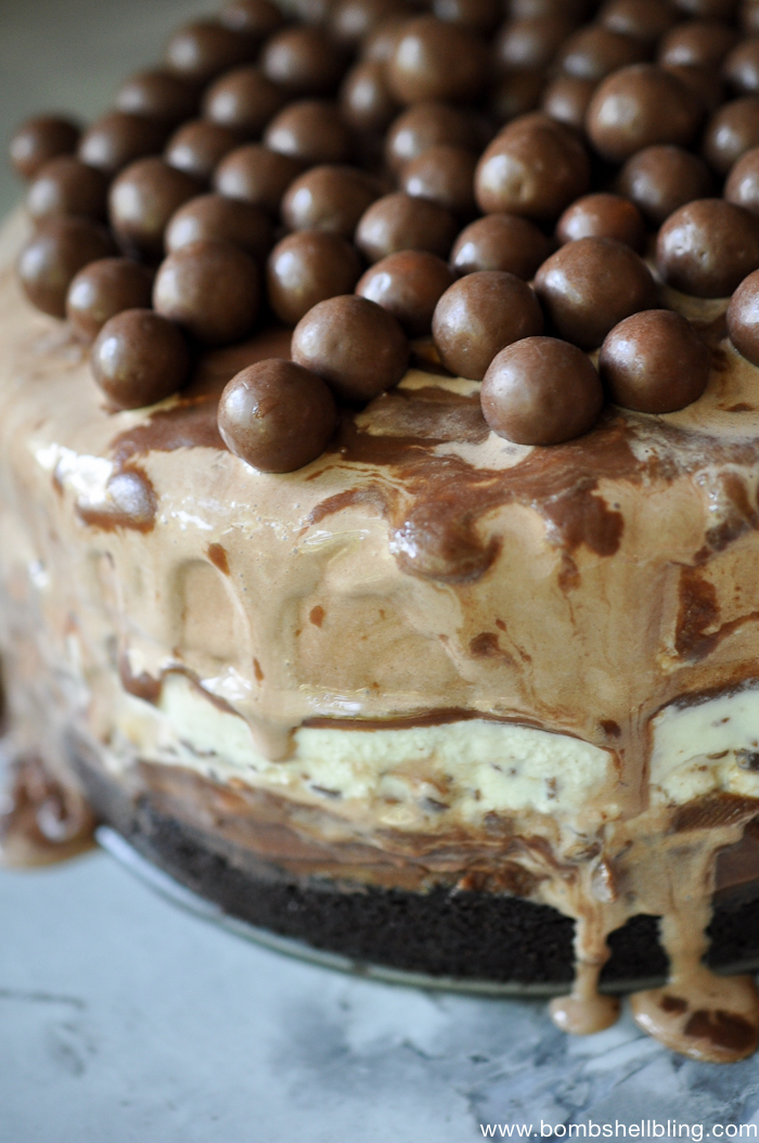 Chocolate Malt Frozen Custard Cake Recipe-4