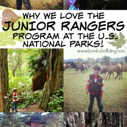 Unplugging for the Summer: JUNIOR RANGERS + a GIVEAWAY!
