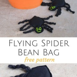 Flying Spider Bean Bags