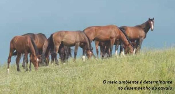 HERANÇA, MEIO AMBIENTE E PEDIGREE