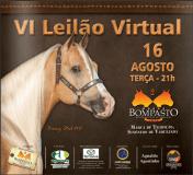 Catálogo VI Leilão Virtual