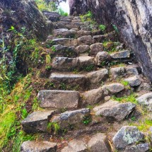 Gringo Killer steps