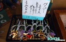 八坂神社のパイパイ