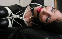 Kinky Young Brunette Gets Bound, Ball Gagged and Hooded for Training