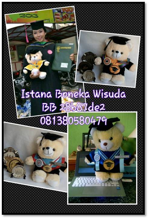 boneka wisuda bear medium