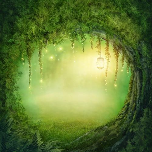 Resultado de imagen de magia bosque