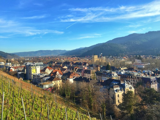 Freiburg Germany Vineyards Wine Region City View