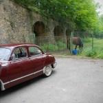 La Panhard bordeaux de Michel et un cheval