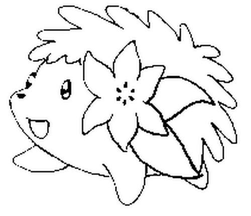 coloriages pokemon shaymin dessins pokemon