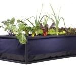 Noocity Growbed Grow Organic Food at Home