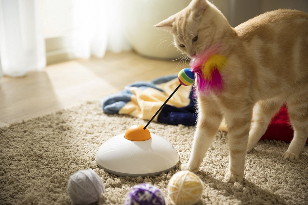 Pawbo Catch Cat Teaser Toy (1)