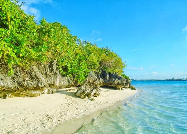 Ile aux Aigrettes beach, Mauritius : Ile Maurice