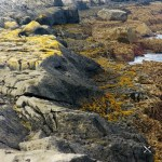 The Burren Irland