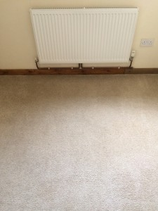 Bonne Fresh Clean - Professional Carpet & Upholstery Cleaning Specialists