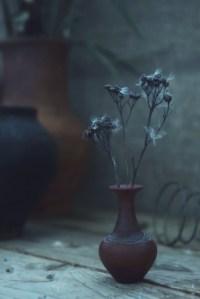 crushed petals