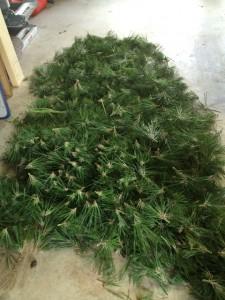 Pine Decandling
