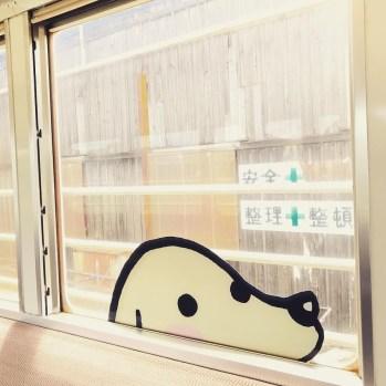 ちょろっと覗いてる窓もありますよ
