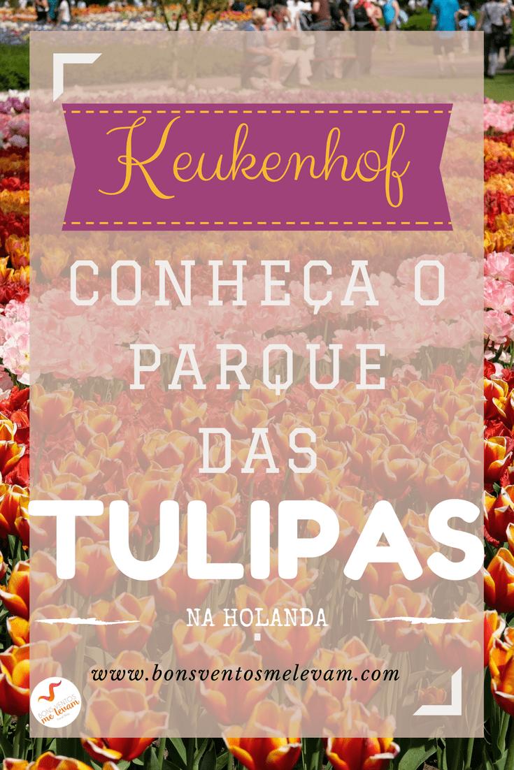 Conheca o parque das tulipas keukenhof na holanda