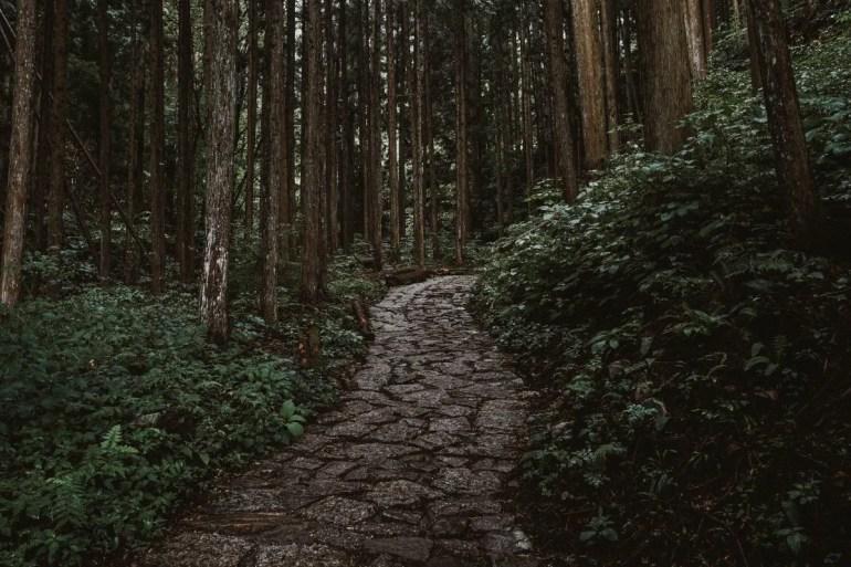 Nakasendo Trail in Kiso Valley