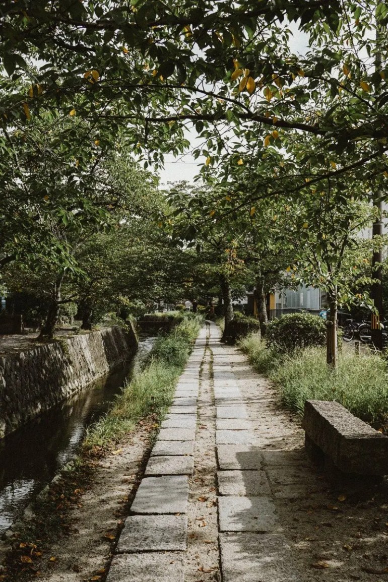 The Best Photography Locations in Kyoto, Japan