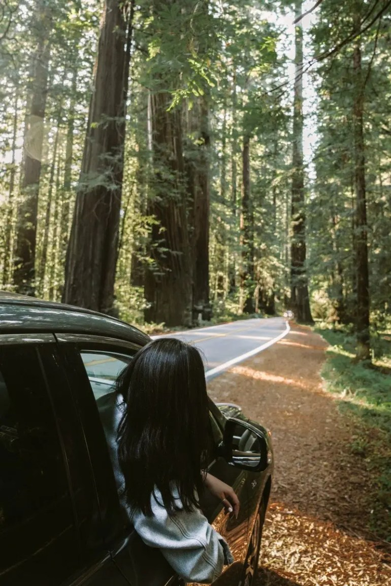 A Road Trip Guide to California's Wild North Coast