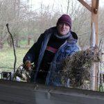 Muscadet Christophe Maillard