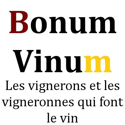logo bonum vinum