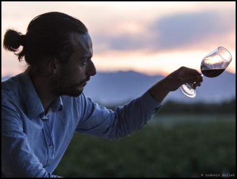 wine explorer