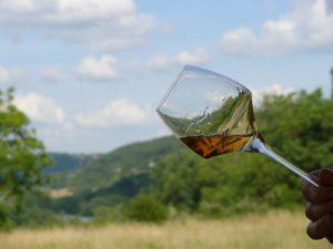 vin bio en chiffres