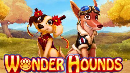 Wonder Hounds