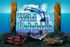 Wild Dolphins de Oryx Gaming dans les casinos de France1-min