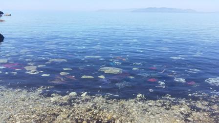 Kleidung in der Bucht von Dikili