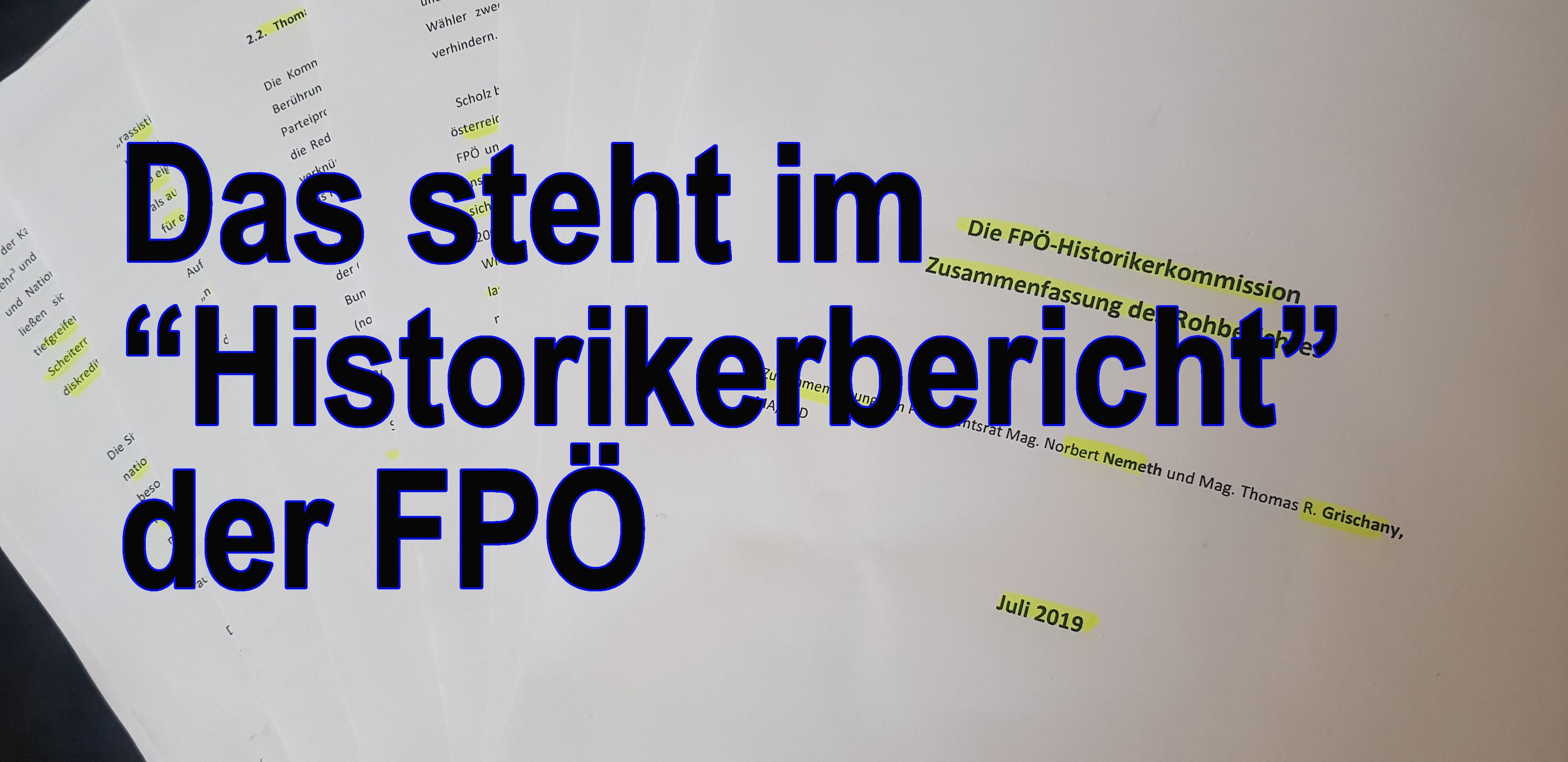 """Das steht im FPÖ-""""Historikerbericht"""""""