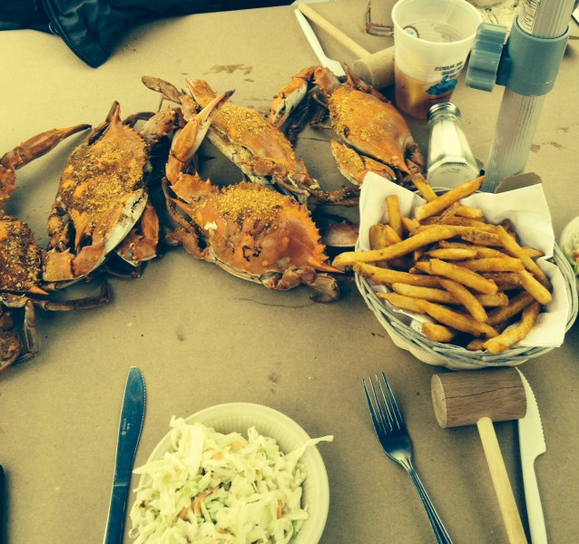 Maryland Blue Crabs on the shores of Chesapeake Bay!
