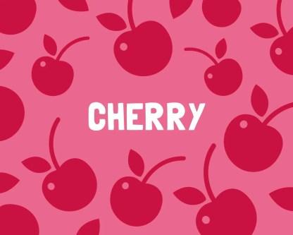Slab Artisan Fudge - Cherry Flavour Graphic