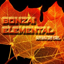 Bonzai Elemental – Autumn Chillz 2K9