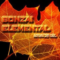Bonzai Elemental – Autumn Chillz 2K9